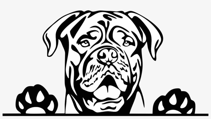 Pitbull clipart black white clip art library Hotsigns And Decals Pitbull Dog Clipart Black White Free ... clip art library