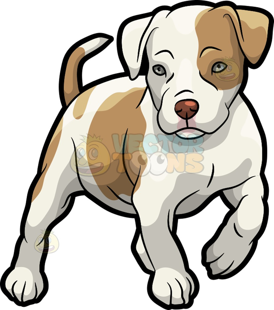 Pittbull clipart png free library Pit Bull Clipart   Free download best Pit Bull Clipart on ... png free library