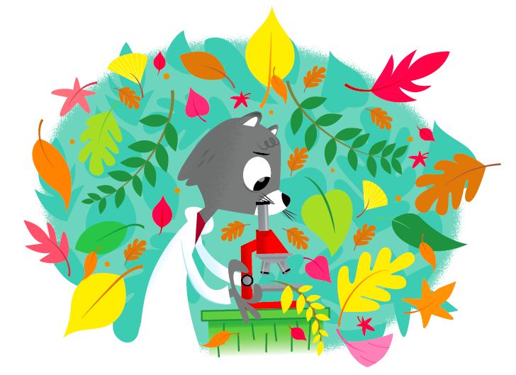 Plant and an animal next to each other clipart png transparent Plants: How do they hold dirt? | Ask Dr. Universe ... png transparent