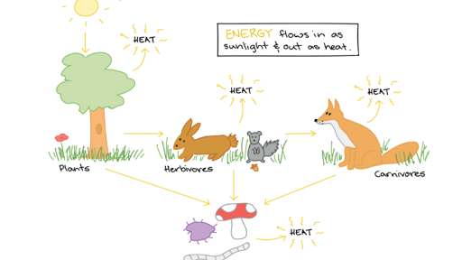 Plant and an animal next to each other clipart graphic freeuse What is an ecosystem? (article) | Ecology | Khan Academy graphic freeuse