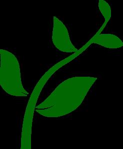 Plant clip art images jpg royalty free Clip art plant - ClipartFox jpg royalty free