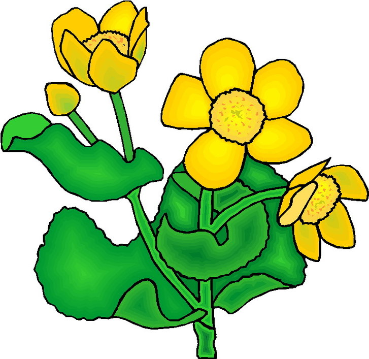 Plant clip art images clipart free library Plants Clipart - ClipArt Best clipart free library