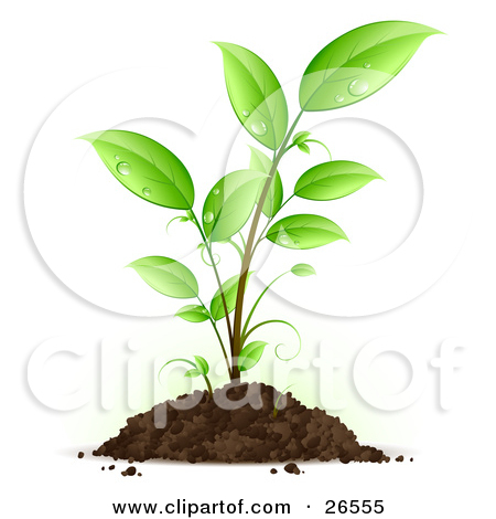 Plant clip art images vector stock Royalty-Free (RF) Plant Nursery Clipart, Illustrations, Vector ... vector stock