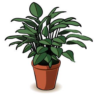 Plant clip art images png freeuse stock Clip art plant - ClipartFox png freeuse stock