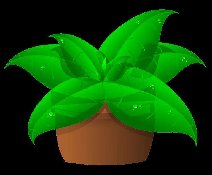 House plant clipart