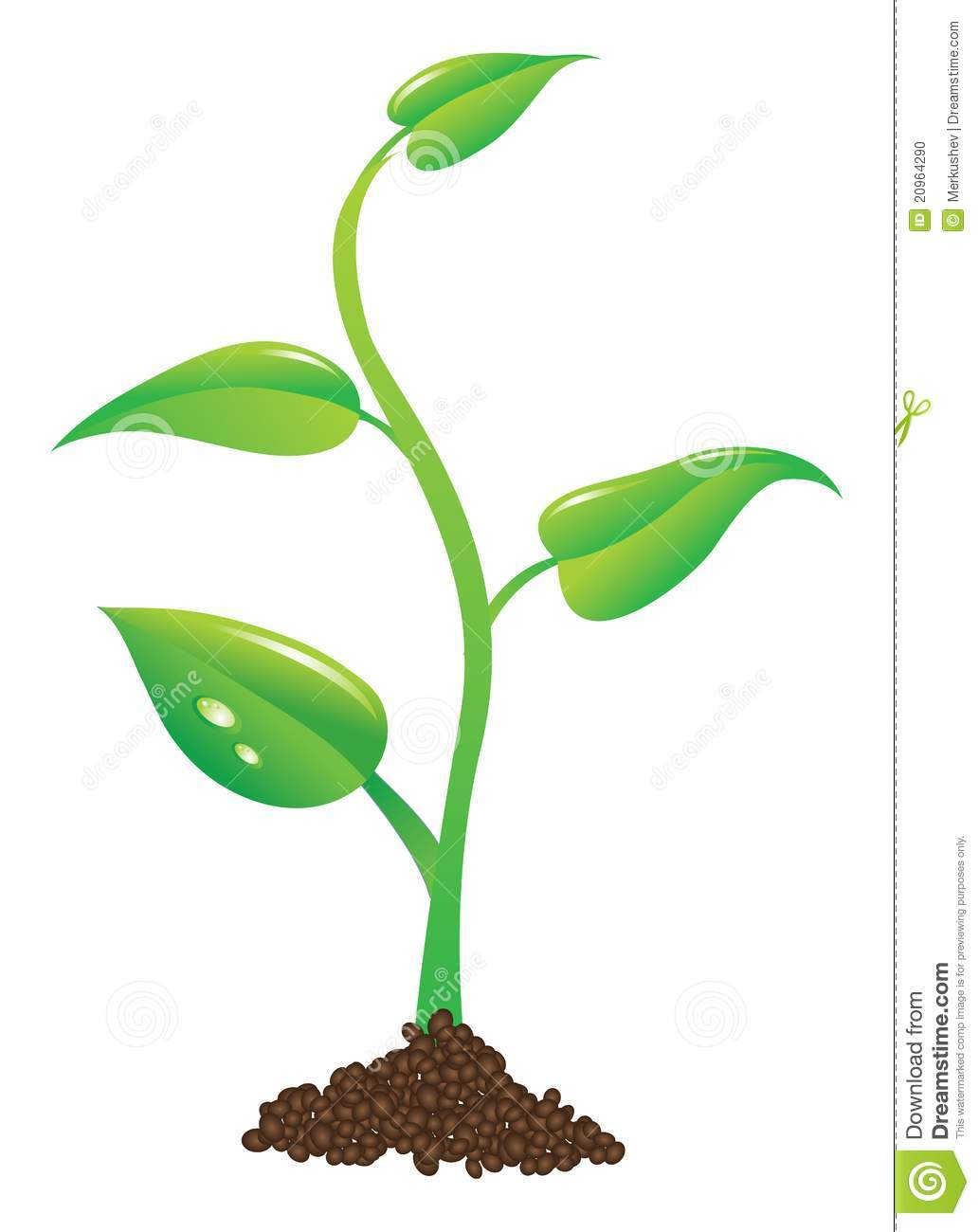 Plant clipart images png free library Cartoon Plant Clipart - Clipart Kid png free library