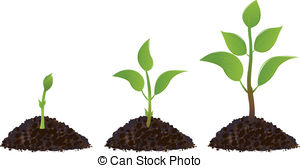 Plant clipart images jpg black and white stock Plant Illustrations and Clip Art. 545,508 Plant royalty free ... jpg black and white stock