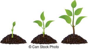 Plant clipart images