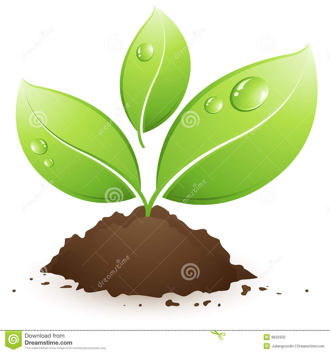 Plant clipart images jpg royalty free stock Plant Clip Art Images | Clipart Panda - Free Clipart Images jpg royalty free stock