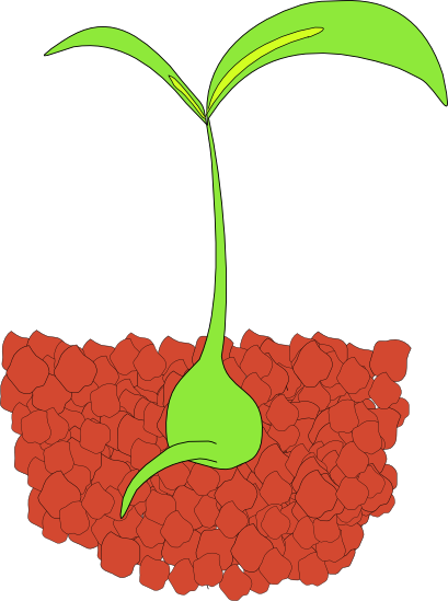 Plant clipart images image free Free Plant Clipart - Graphics of Plants image free