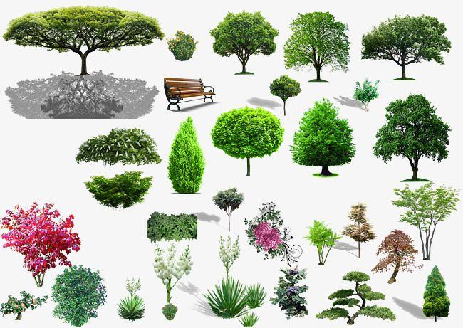 Plant community clipart clip download Plant Material, Plant Clipart, Shrubs, Purple PNG ... clip download