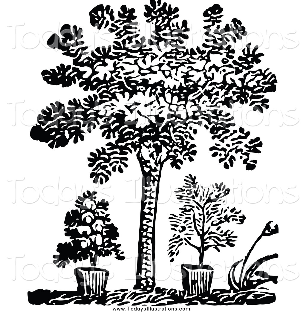 Plant grayscale clipart image black and white library Clipart of a Black and White Tree and Potted Plants by ... image black and white library