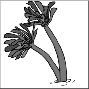 Plant grayscale clipart graphic freeuse stock Clip Art: Plants: Sea Palm Grayscale I abcteach.com   abcteach graphic freeuse stock