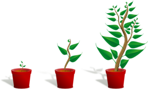 Plant grow clipart vector library library Plant Growth Clip Art at Clker.com - vector clip art online ... vector library library