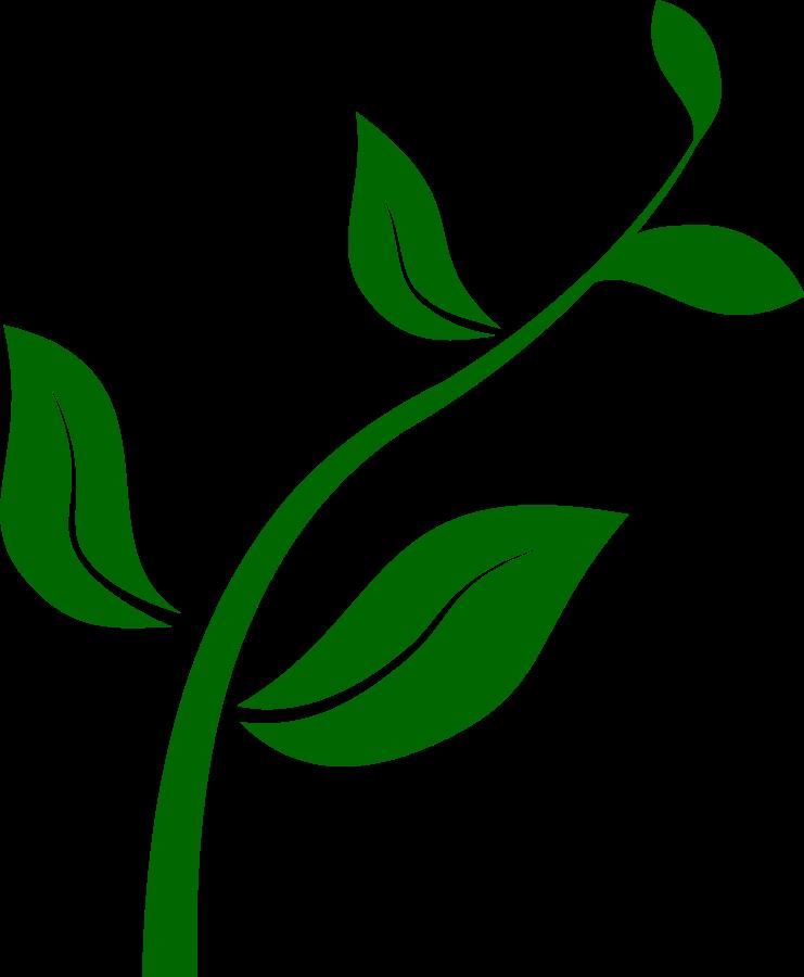 Plant images clipart image transparent library Seed Clip Art Free   Clipart Panda - Free Clipart Images ... image transparent library
