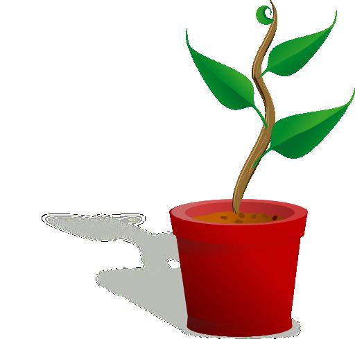 Plant grow clipart