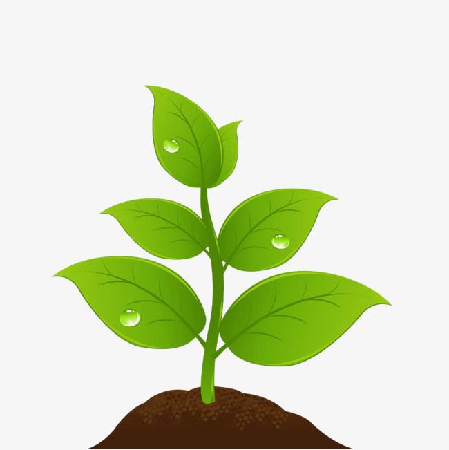Plant image clipart clipart transparent download Plant clipart png » Clipart Station clipart transparent download