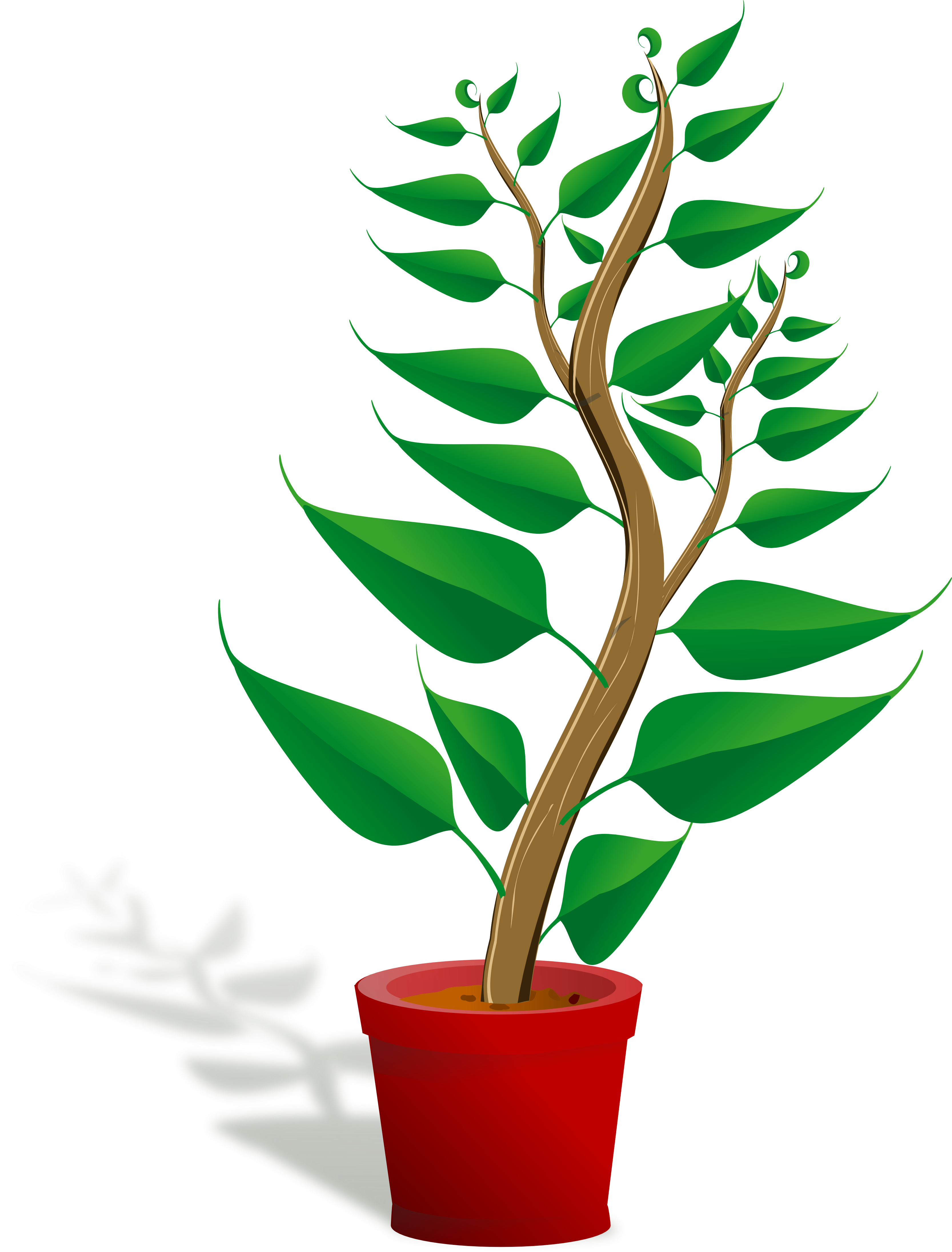 Plant image clipart vector free stock Plants clip art free clipart images - Cliparting.com vector free stock