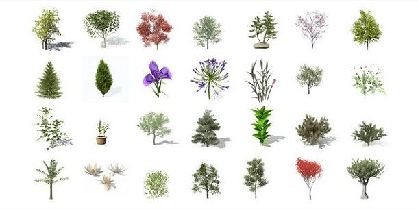 Library Of Plant Images Free Download Png Files Clipart Art