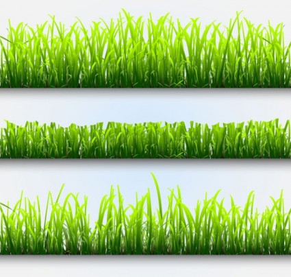 Plant images free download black and white stock Plant 02 vector | free vectors | UI Download black and white stock