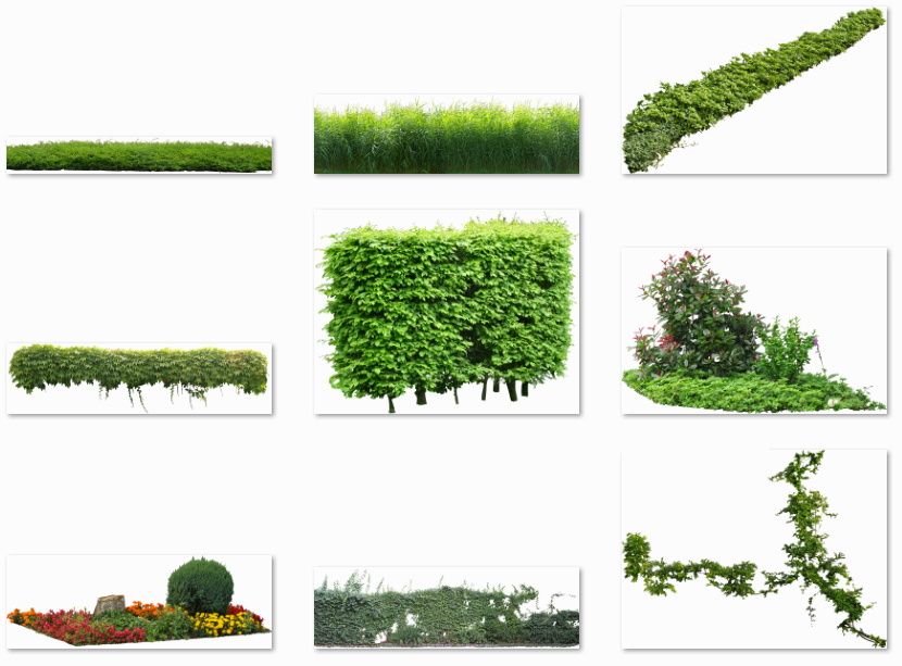 """Plant images free download png royalty free library Update: """"Open ArchiVIZ pack"""" 1.1 now with Cutout Plants ... png royalty free library"""