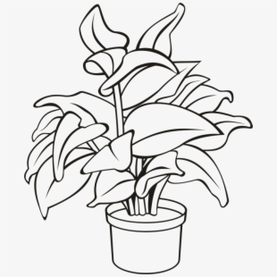 Plant in a pot clipart black and white picture royalty free Potted Plants Clipart 3 Leaf - Indoor Non Flower Plant ... picture royalty free