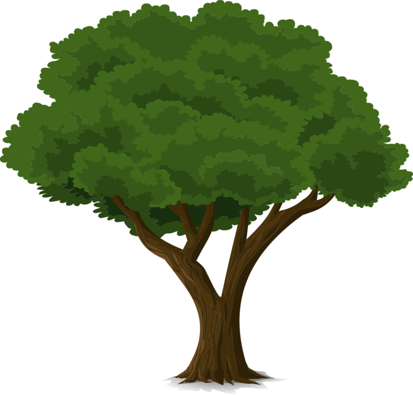 Planting tree clipart vector royalty free library Community Tree Planting Grants for UK and Africa - International ... vector royalty free library