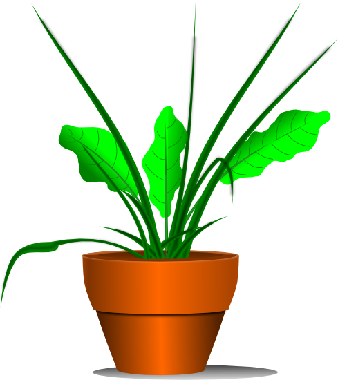 Plants clipart free