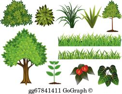 Plants clipart free banner black and white Plant Clip Art - Royalty Free - GoGraph banner black and white