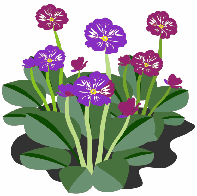 Plants flowers clipart picture library Plant,Flower,Viola Clipart - Royalty Free SVG / Transparent ... picture library