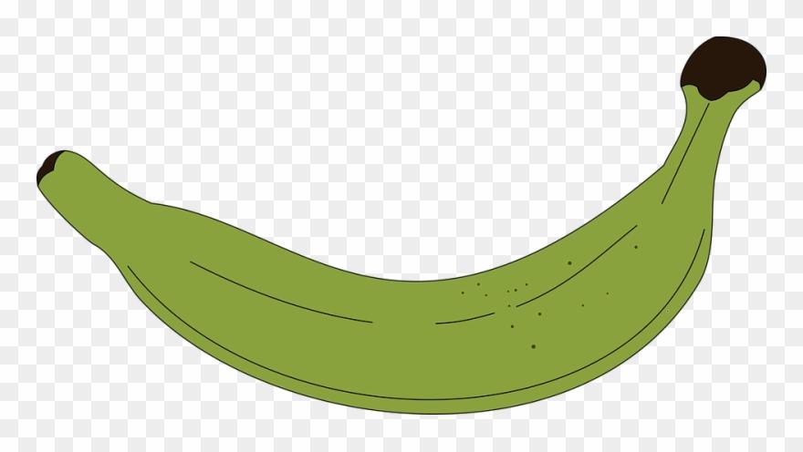 Platano clipart graphic library download Vector Swirl Clipart Banana - Platano Vector Png Transparent ... graphic library download