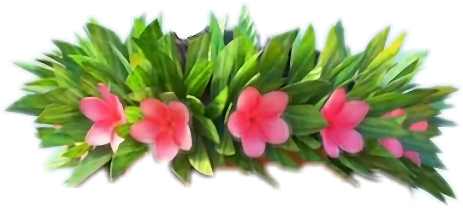 Png clipart flower crown png freeuse download Moana flowercrown freetoedit png freeuse download