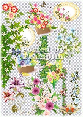 Png clipart transparent background png library stock Raster png clipart a transparent free background flowers bouquets png library stock