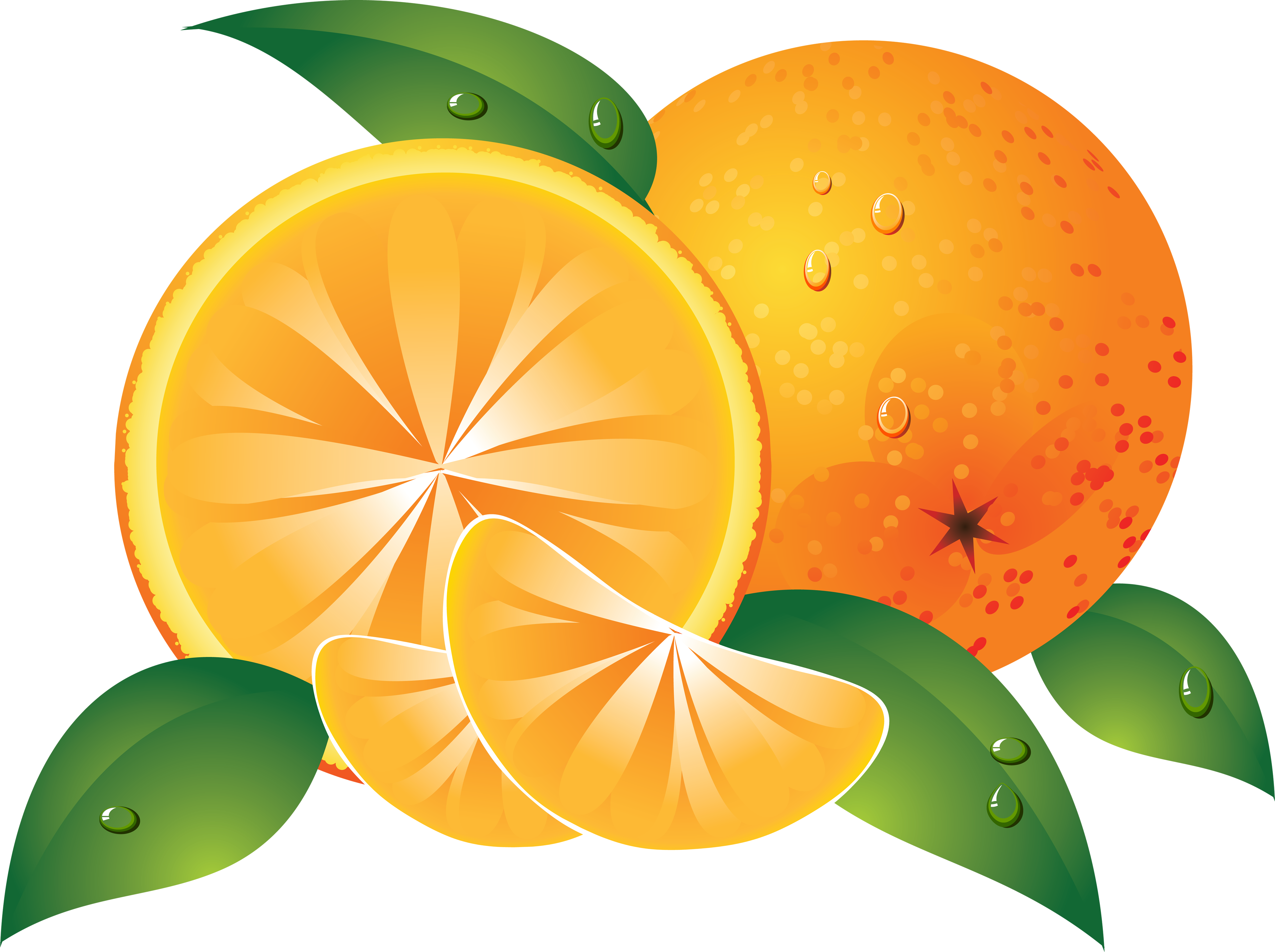 Png cliparts free download clipart freeuse Orange PNG image free download clipart freeuse