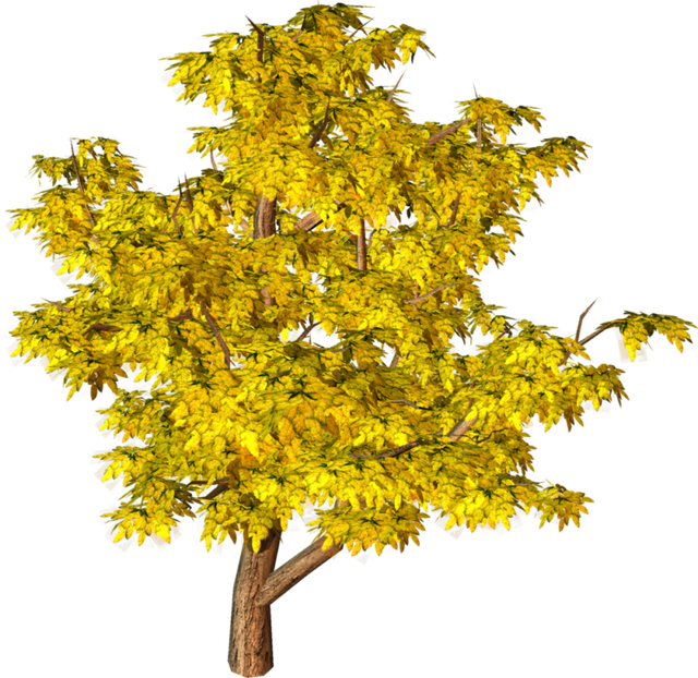 Png landscape clipart tree png free 10 TREE PNG IMAGES (FREE CUTOUTS) FOR ARCHITECTURE, LANDSCAPE ... free