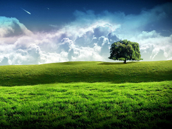 Png landscape clipart tree png clipart royalty free download New Bliss Tree Green Landscape Scenery Wallpaper | Free Images at ... clipart royalty free download