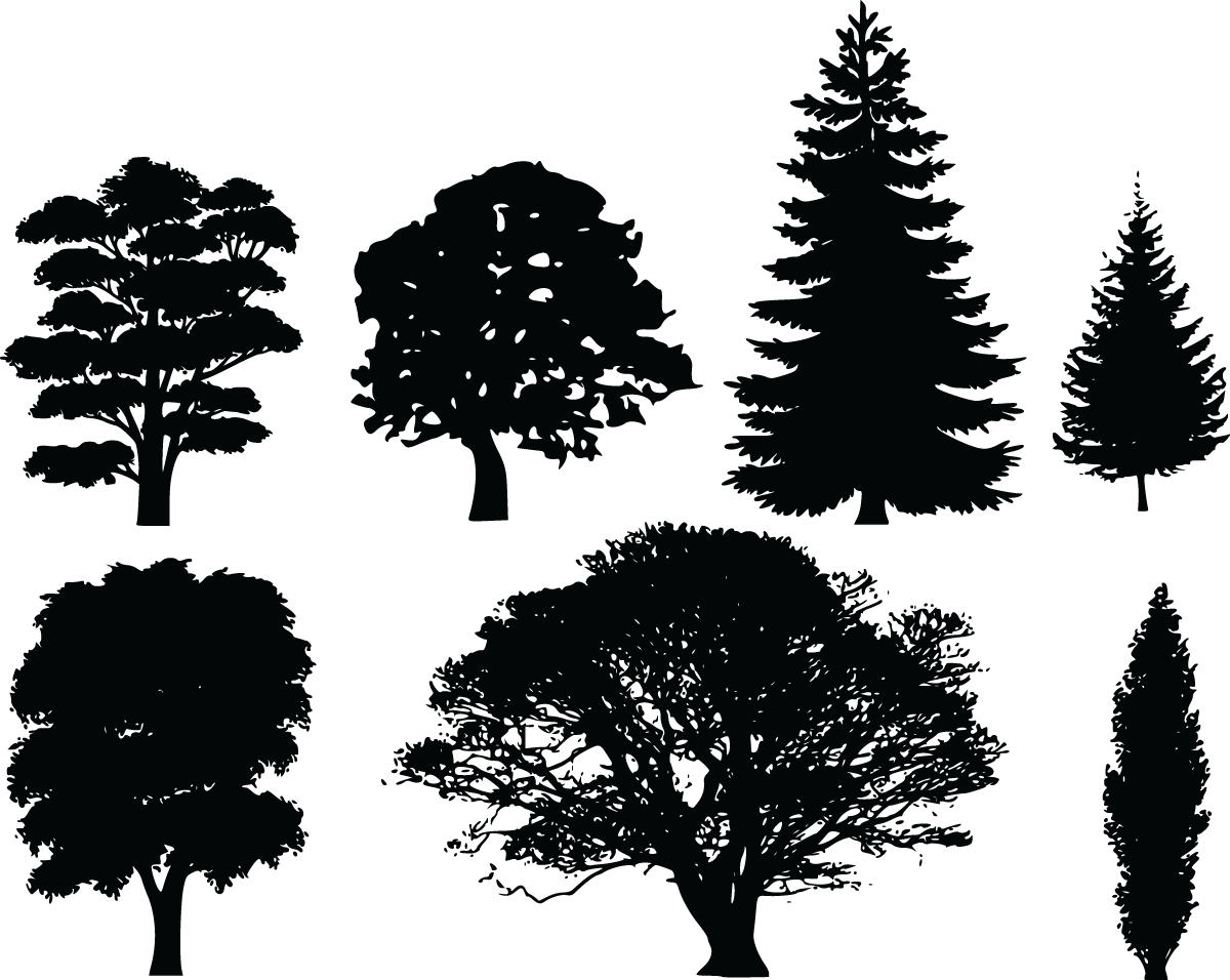 Black clipart tree png black and white library Landscape clipart tree png - ClipartFest png black and white library