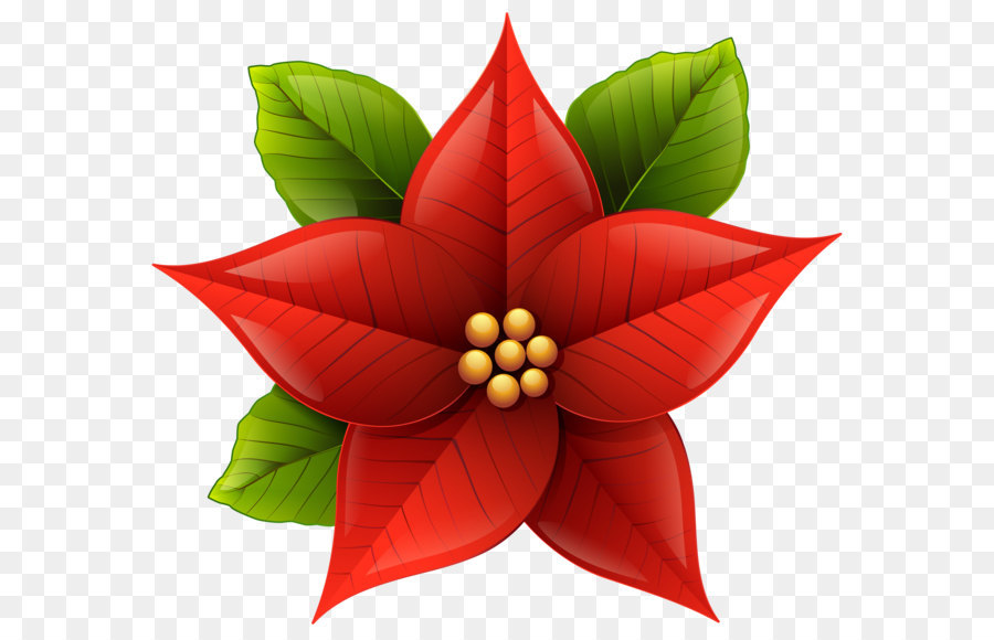 Poinettia clipart image Christmas Poinsettia Clipart png download - 6414*5697 - Free ... image
