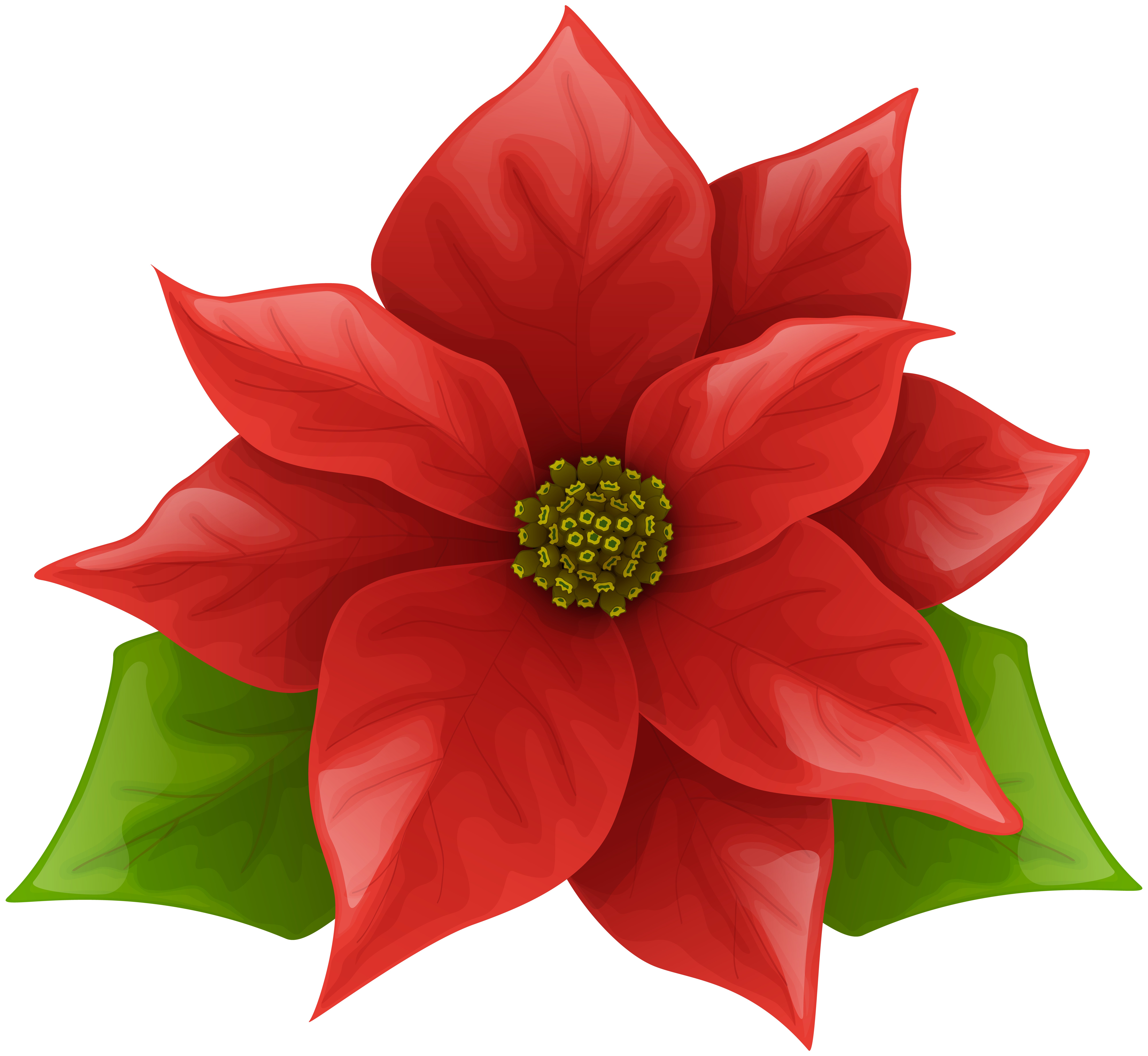 Poinsettias clipart with transparent background svg stock Christmas Poinsettia PNG Clip Art Image | Gallery ... svg stock