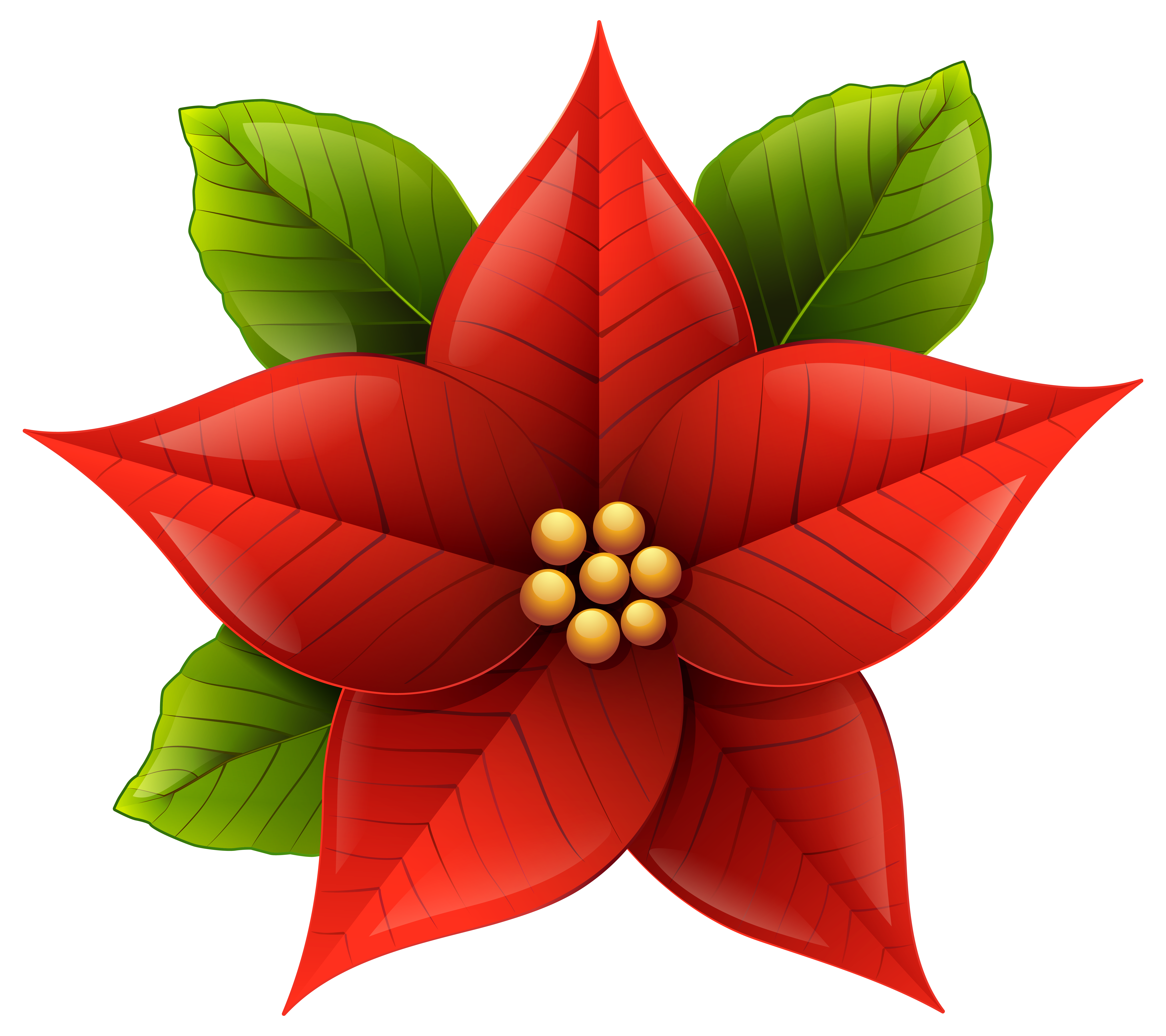 Poinsettia plant clipart image free stock Free Poinsettia Flower Cliparts, Download Free Clip Art ... image free stock