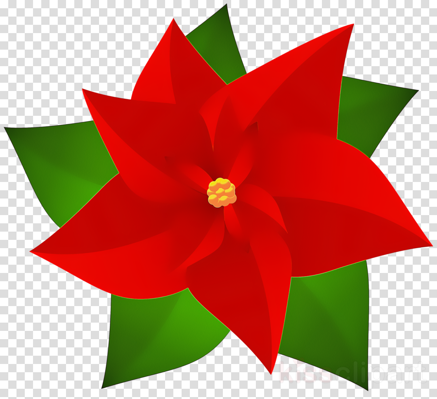 Poinsettia plant clipart svg free red flower petal poinsettia plant clipart - Red, Flower ... svg free