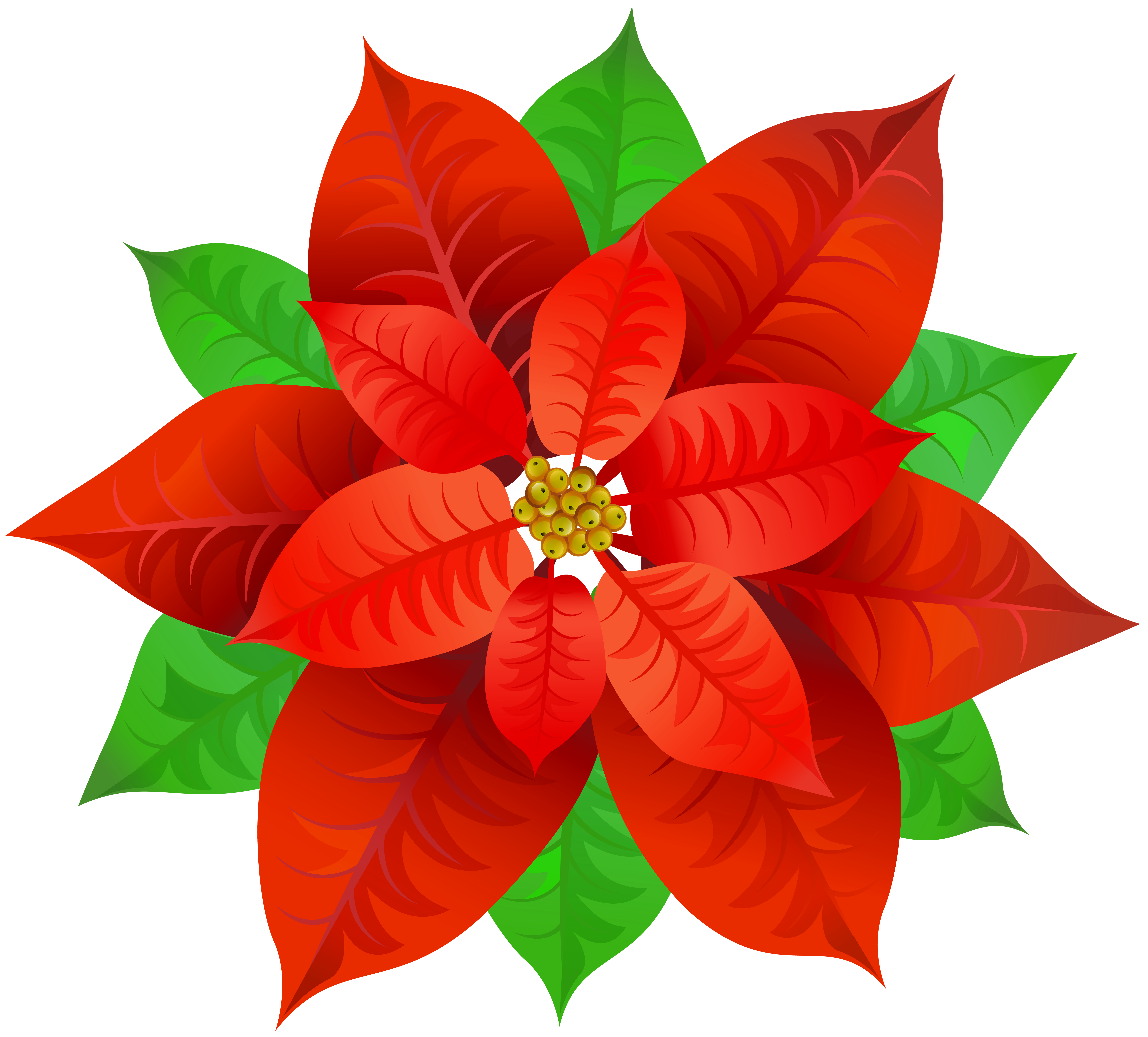 Poinsettias clipart with transparent background png royalty free stock Poinsettia Transparent PNG Image | Gallery Yopriceville ... png royalty free stock