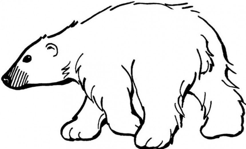 Polar bear clipart black and white image free download Polar Bear clipart printable #3 | Drawing Ideas! in 2019 ... image free download