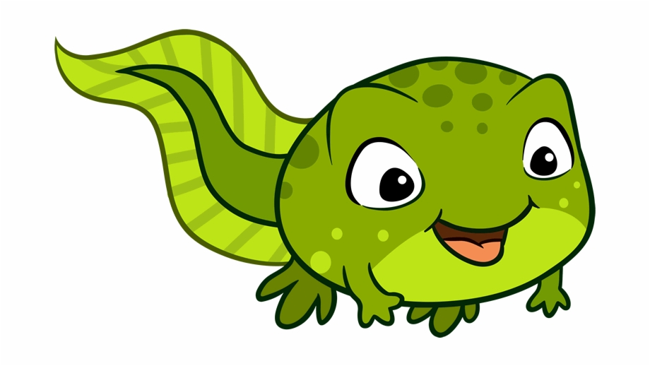 Polliwog clipart png freeuse Tadpoles 0-2 - Tadpole With Legs Clipart Free PNG Images ... png freeuse