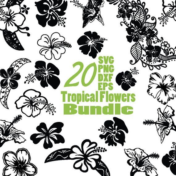 Polynesian clipart graphic library Hibiscus clipart, Tropical Lovers svg, Polynesian svg ... graphic library
