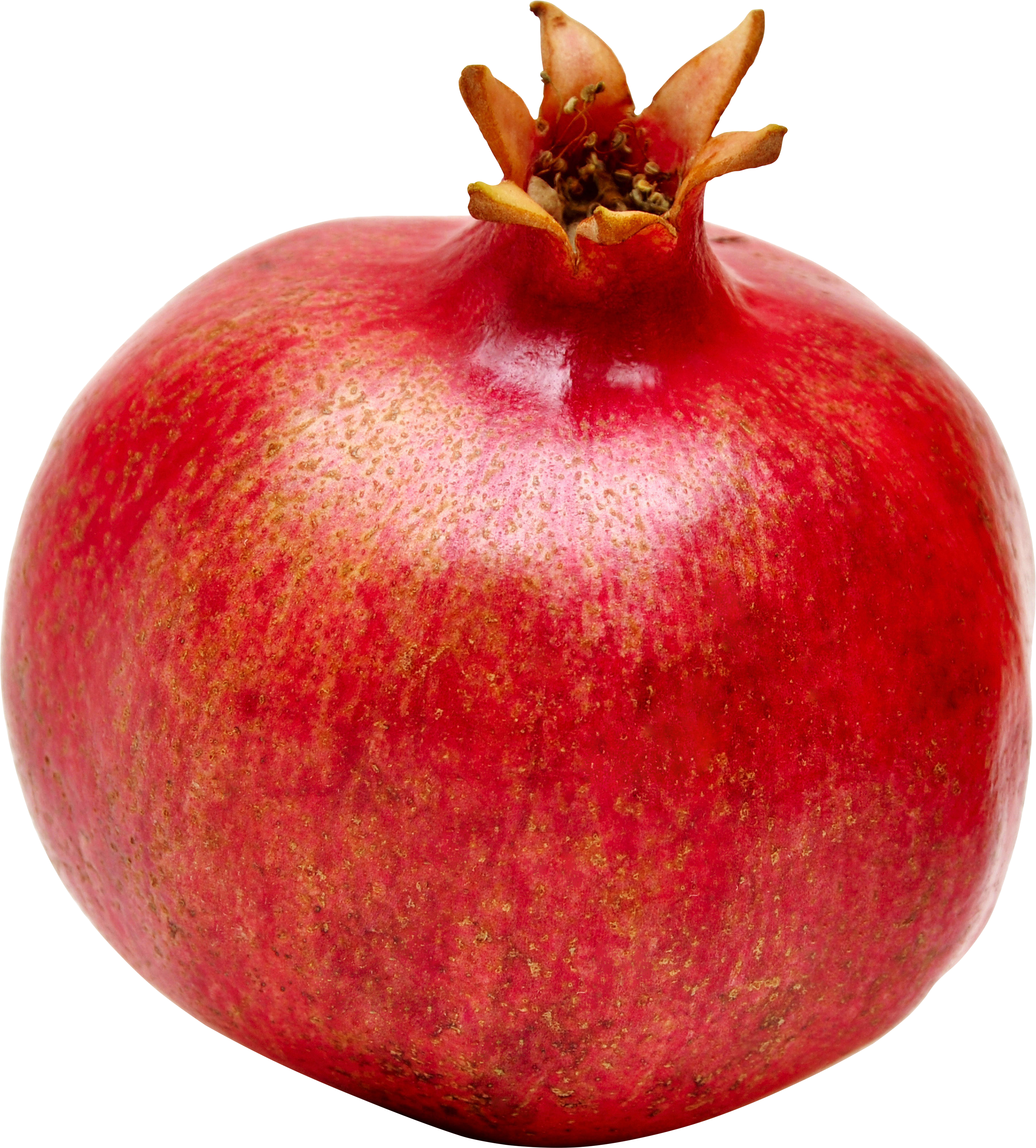 Pomegranate tree clipart clipart royalty free library Pomegranate PNG images free download clipart royalty free library