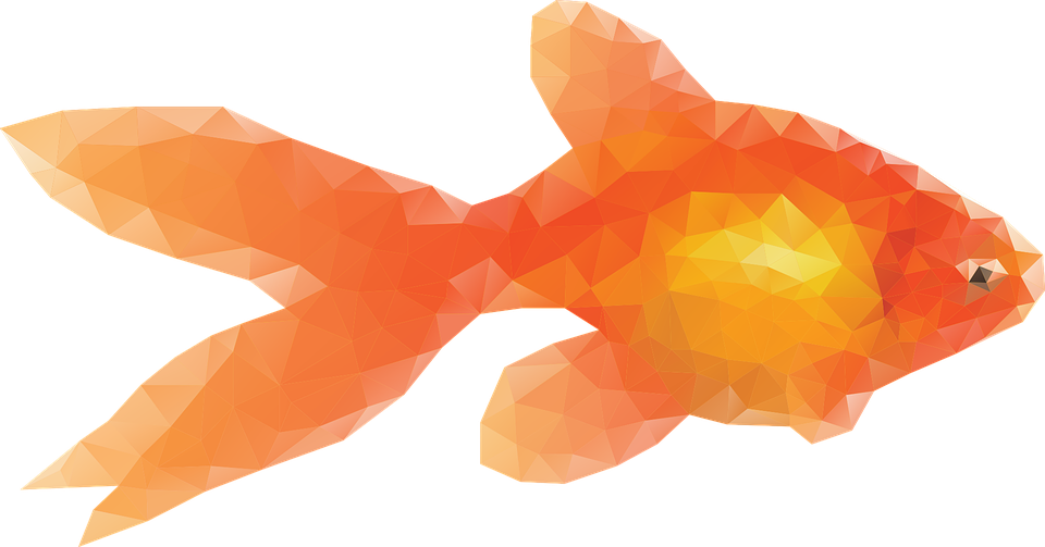 Pond fish clipart png clip library stock PNG Goldfish Transparent Goldfish.PNG Images. | PlusPNG clip library stock