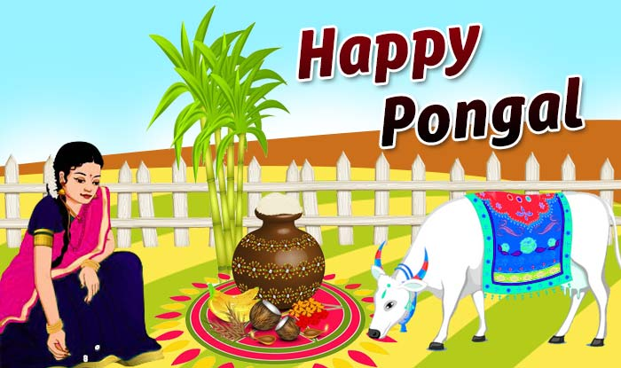 Pongal festival clipart svg free library Pongal Festival: 8 Ways to Decorate Your House svg free library
