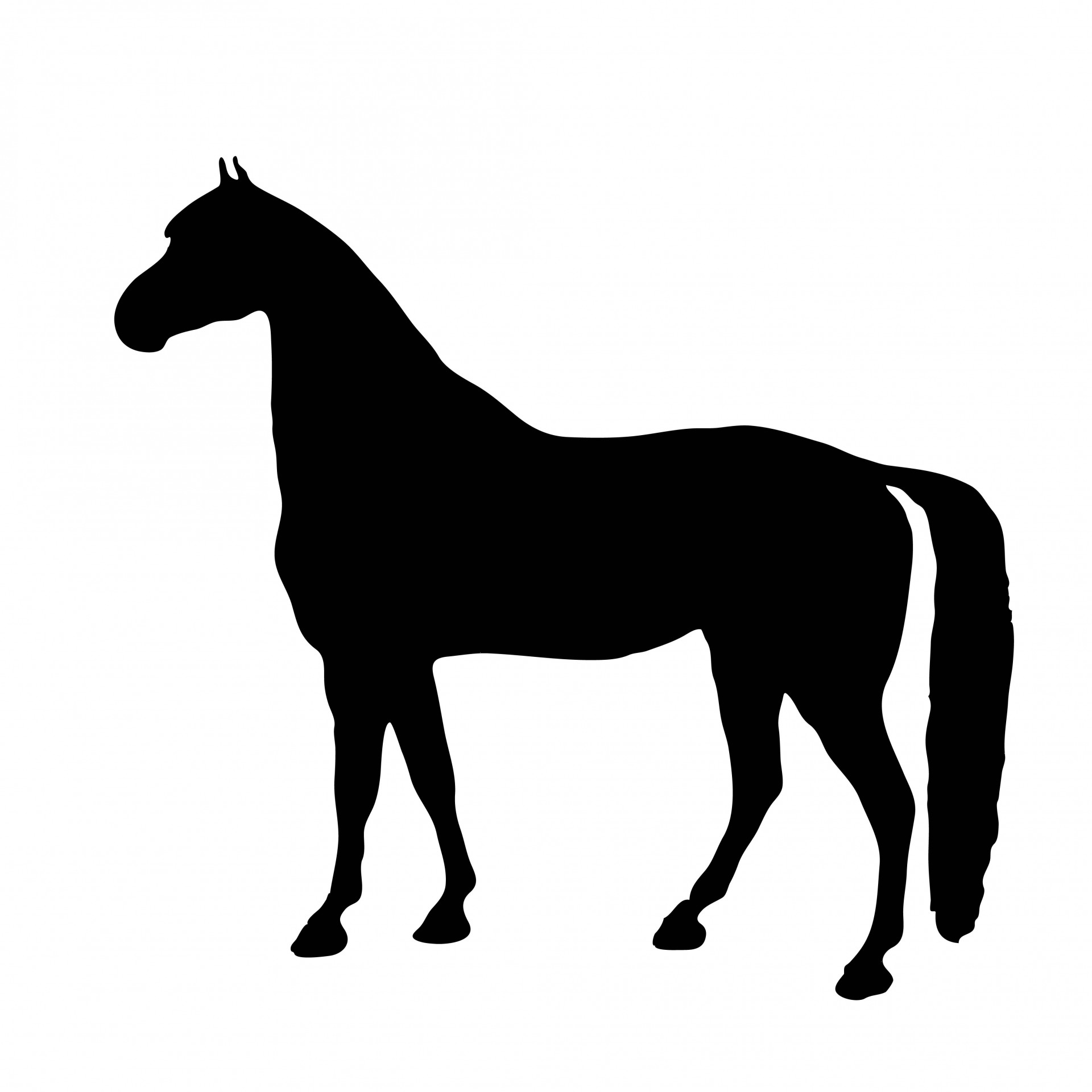 Pony silhouette clipart svg stock Horse,pony,thoroughbred,racehorse,black - free photo from ... svg stock