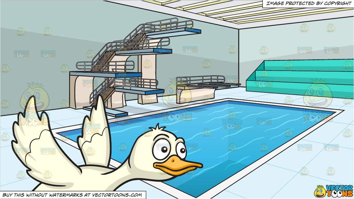 Pool background clipart clip black and white download A Flying Duck and Indoor Olympic Style Diving Pool Background clip black and white download